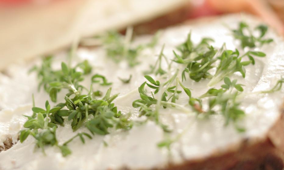 Butter-Alternativen fürs Brot