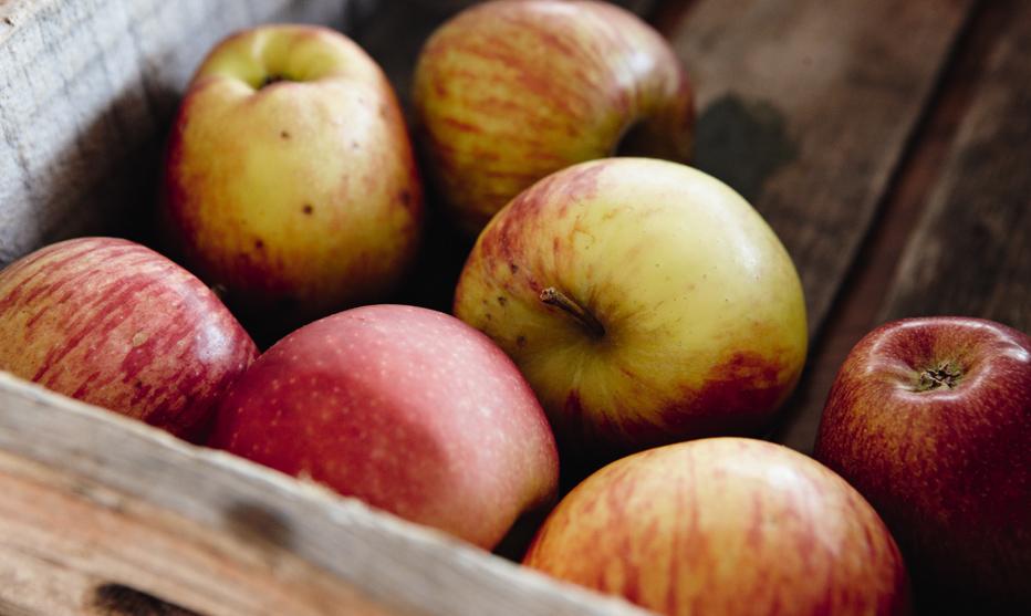 Apfelzeit - gesund Abnehmen durch Abnehmen mit Genuss